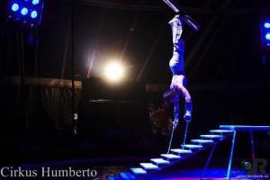 cirkus-humberto-horice-1