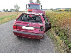 nehoda-jerice