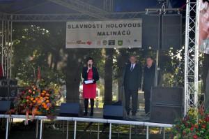 slavnosti-holovouskych-malinacu-2014-2