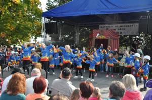 slavnosti-holovouskych-malinacu-2014-9