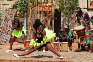 zoo-dvur-kralove-afrika-live-2016-1