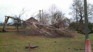 vitr-kacel-stromy-pardubicko-1