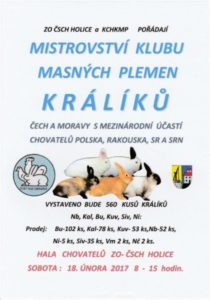 vystava-kraliku-holice-18-2-2017