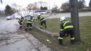 zasah-hasicu-popadane-stromy-24-2-2017-2