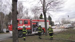 zasah-hasicu-popadane-stromy-24-2-2017-3