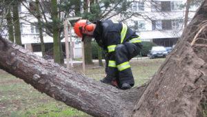 zasah-hasicu-popadane-stromy-24-2-2017-6