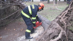 zasah-hasicu-popadane-stromy-24-2-2017-74