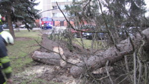 zasah-hasicu-popadane-stromy-24-2-2017-8