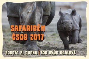 safari-beh-8-4-2017-zoo-dvur-kralove-nad-labem