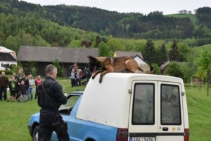 den-s-policii-nachod-2017-3-1