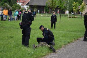 den-s-policii-nachod-2017-3-167