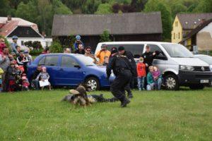 den-s-policii-nachod-2017-3-17