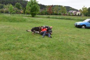 den-s-policii-nachod-2017-3-257