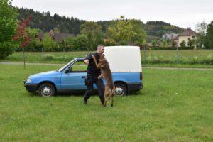 den-s-policii-nachod-2017-3-334