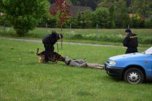 den-s-policii-nachod-2017-3-429