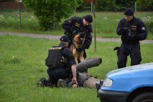 den-s-policii-nachod-2017-3-431