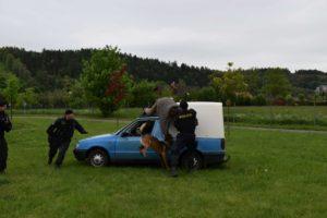 den-s-policii-nachod-2017-3-453