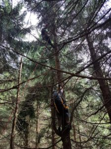 hasici-horni-marsov-paraglidista-28-6-2017-3